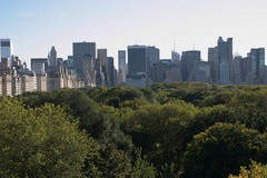 Central Park as seen from the Met Rooftop
